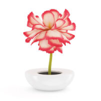 3d model flower free1