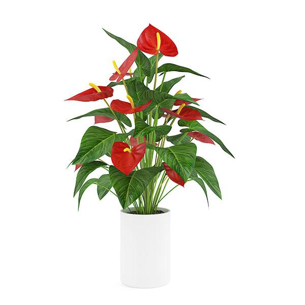 دانلود رایگان آبجکت گلدان سه بعئی تری ئی مکس 10