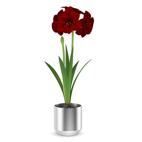 دانلود رایگان گلدان مدل مکس 11
