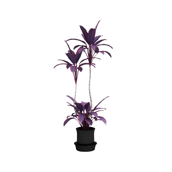 free 3d model plant 33