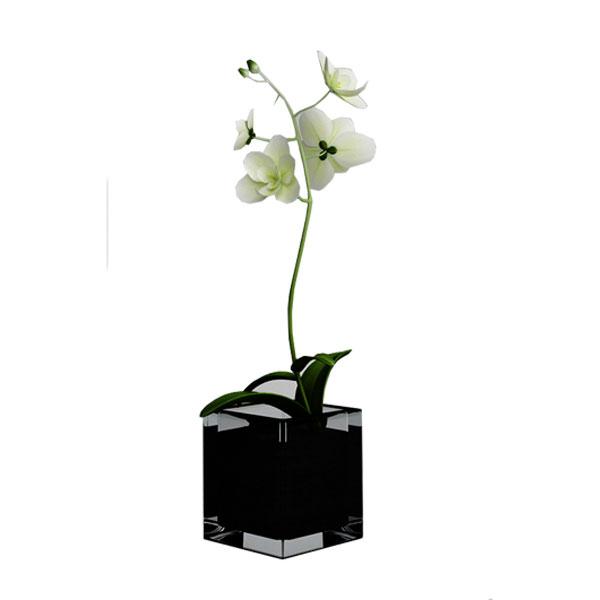rochid flower 3d model no 34