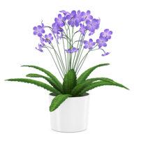free 3d model flower 15
