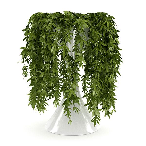 free 3d model plant