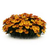 free 3d model bush